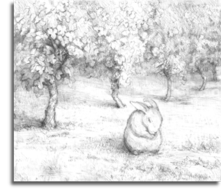Bunny in Vineyard