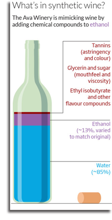 Synthetic Wine Graph